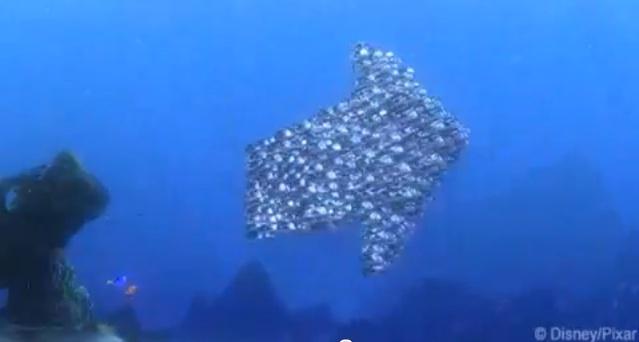 Cardume forma uma seta em Procurando Nemo