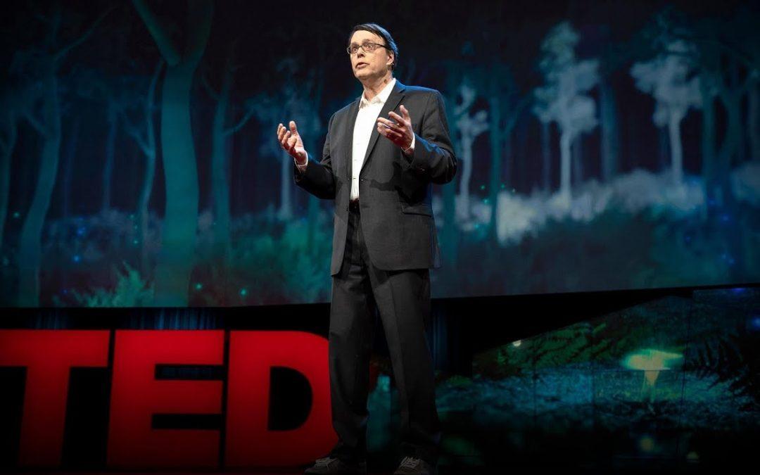Magos e Profetas tecnológicos e a sobrevivência da humanidade além dos 10 bilhões de pessoas