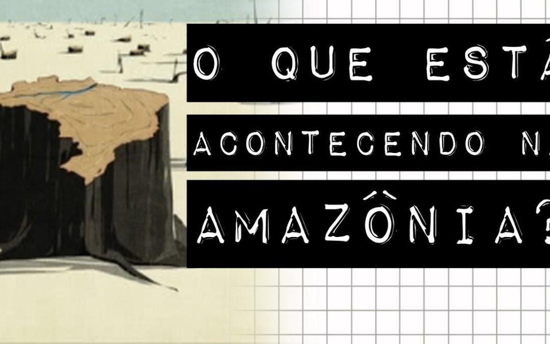 O QUE ESTÁ ACONTECENDO NA AMAZÔNIA? #meteoro.doc